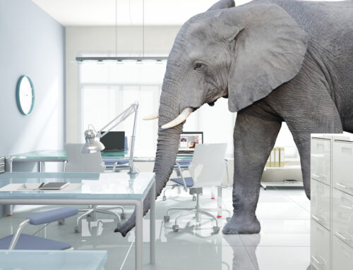 Elephant in the room – The BIG issue of cashflow planning